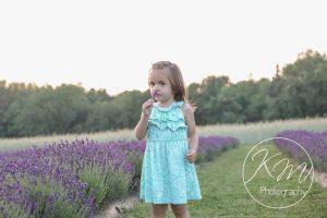 Moore Manor Lavender   growing lavender in Maine