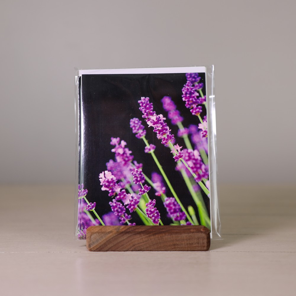 lavender norecards